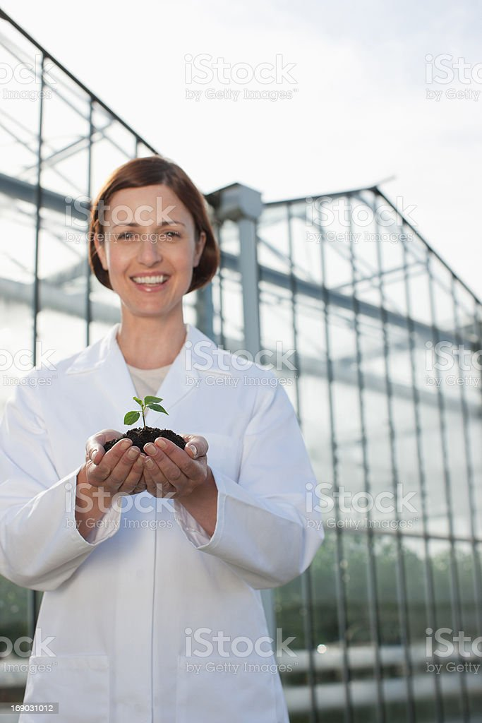 Scientist holding seedling outside greenhouse royalty-free stock photo