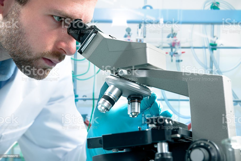 Scientist looking through a light microscope stock photo