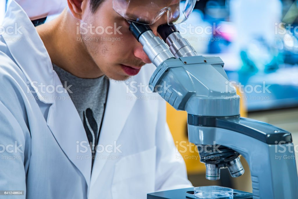 Scientist looking through a microscope in laboratory, close up stock photo