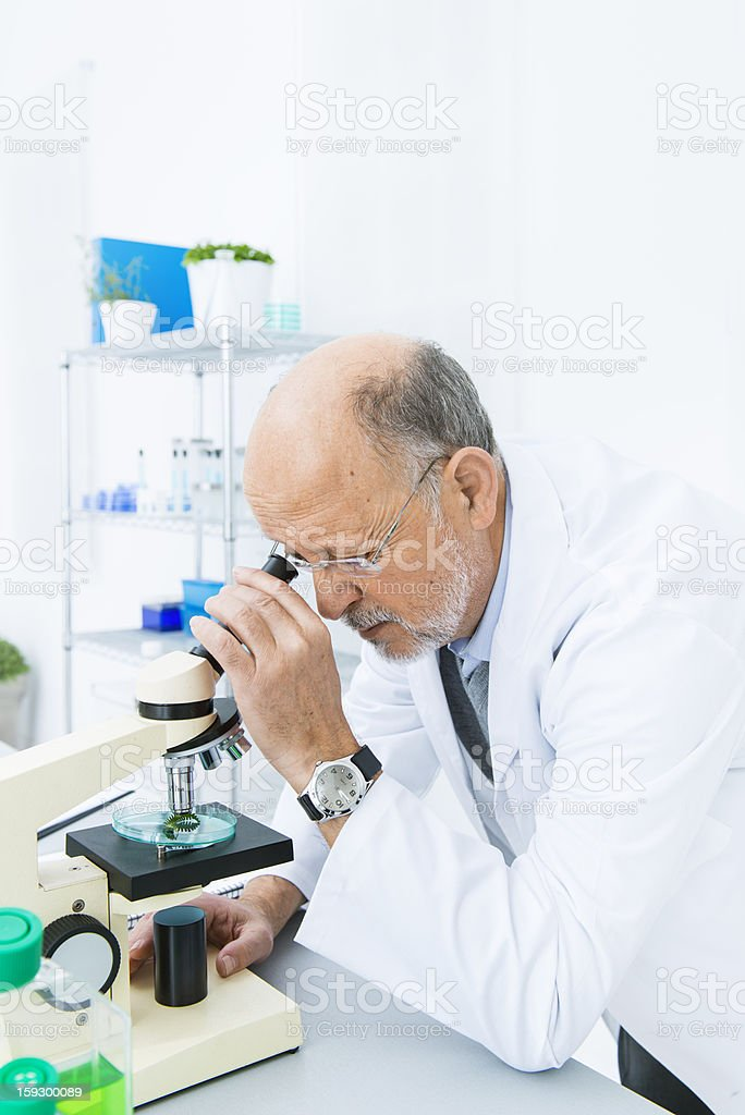 Scientist looking through microscope royalty-free stock photo
