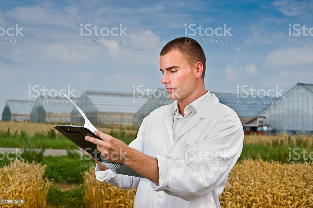 Scientist of a crop field using tablet stock photo