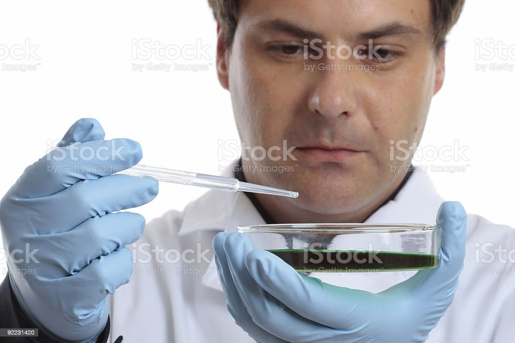 Scientist or chemist with petri dish royalty-free stock photo