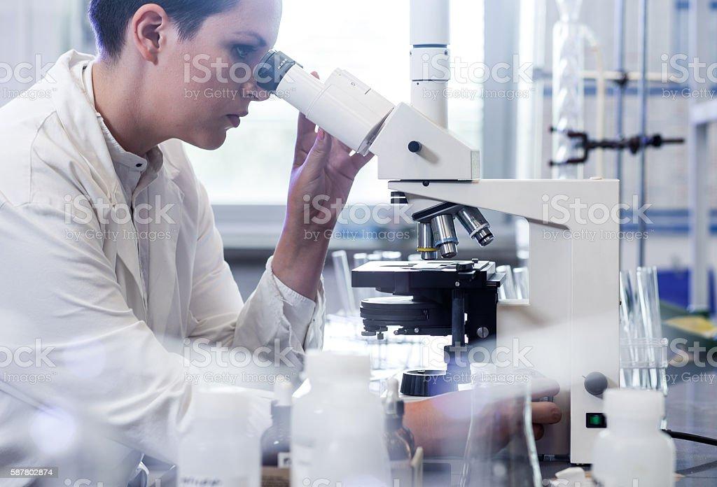 Scientist Using a Microscope stock photo
