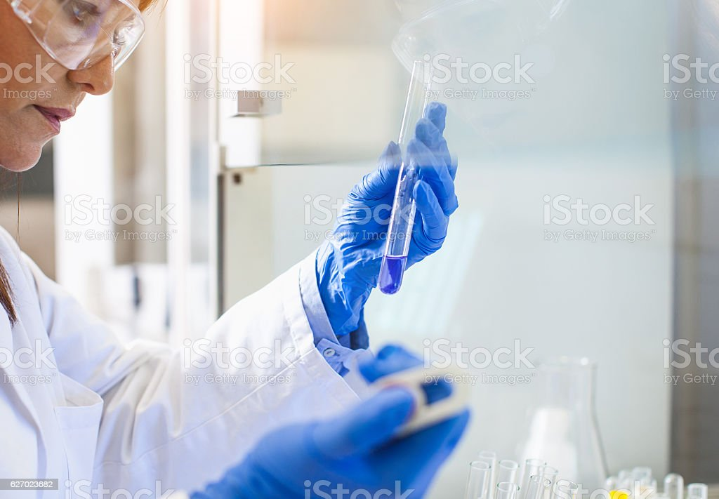 Scientist Using an Automatic Pipette in The Digestorium stock photo