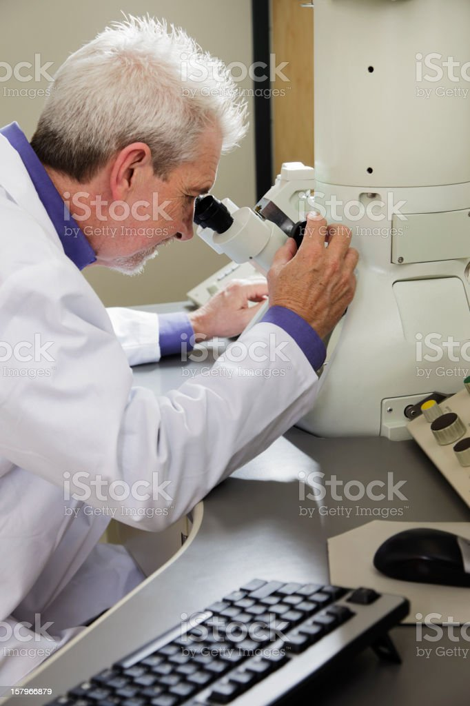 Scientist using an Electron Microscope royalty-free stock photo