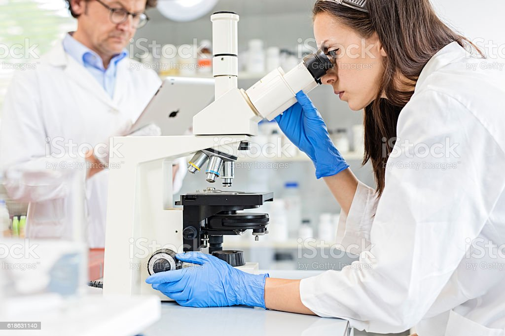 Scientist using microscope in lab stock photo