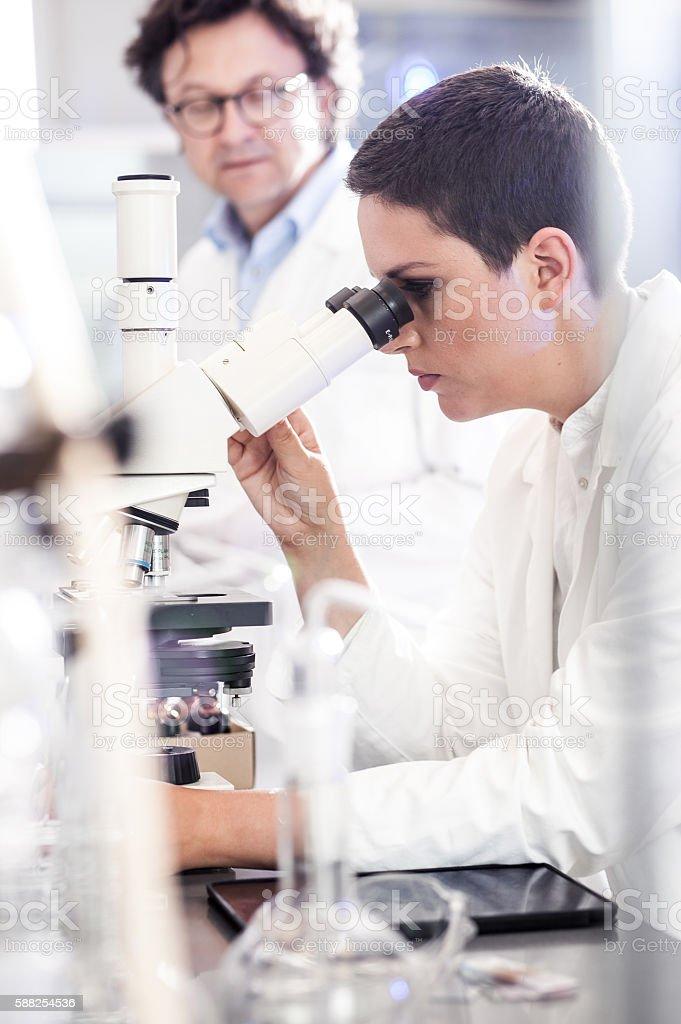 Scientist using the Microscope stock photo