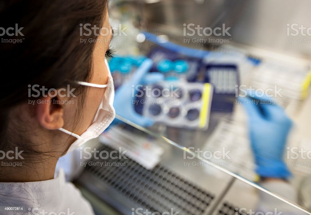 scientist workin in lab- eye level wiew stock photo