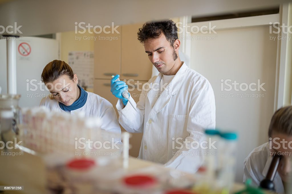Scientist working in lab stock photo