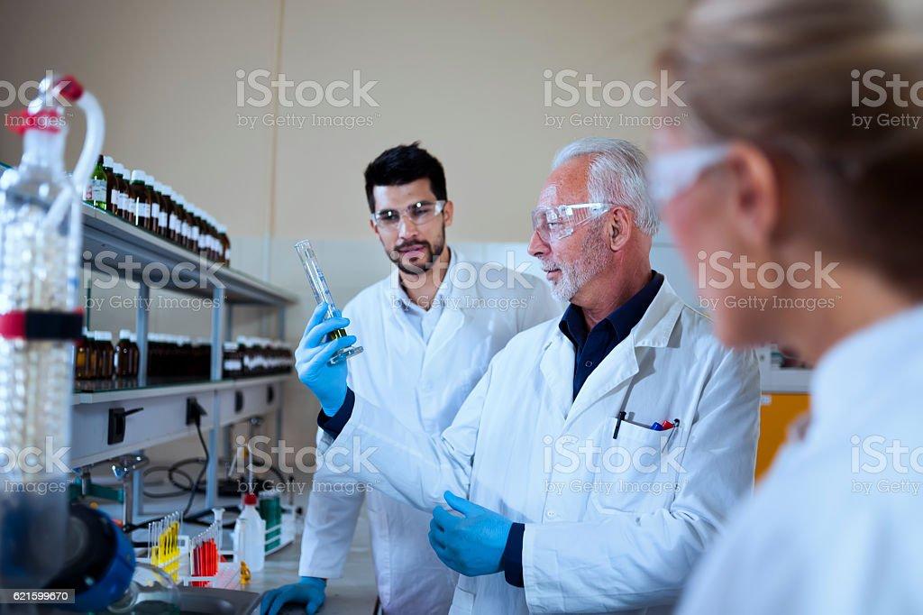 Scientist working in laboratory stock photo