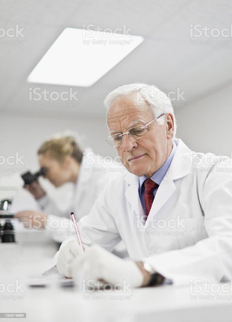 Scientist working in pathology lab stock photo