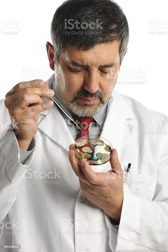 Scientist Working with Bacteria On Petri Dish royalty-free stock photo