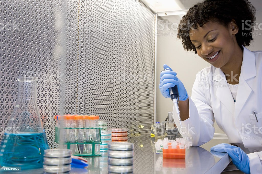 Scientist working with medical samples in laboratory stock photo