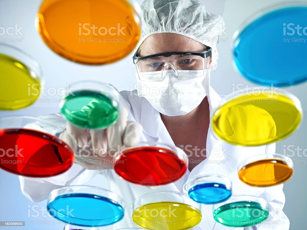 Scientist Working With Petri Dishes stock photo