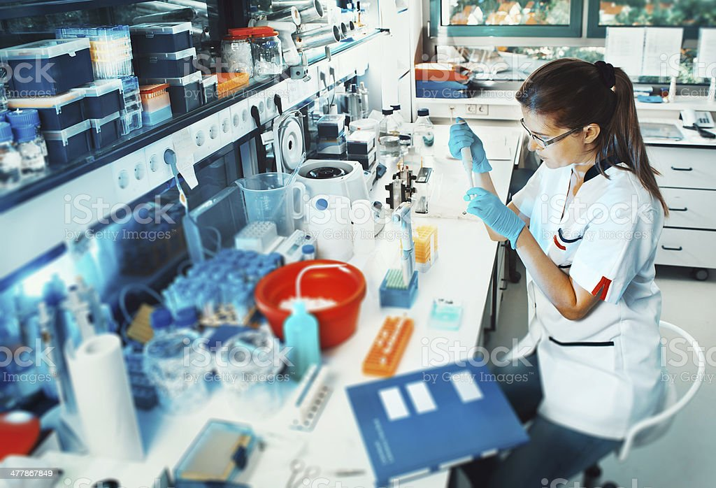 Scientist works in the lab stock photo
