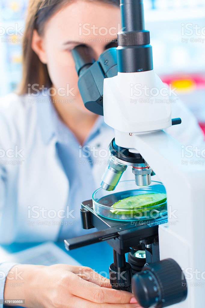 Scientist young woman using a microscope in a science laboratory stock photo