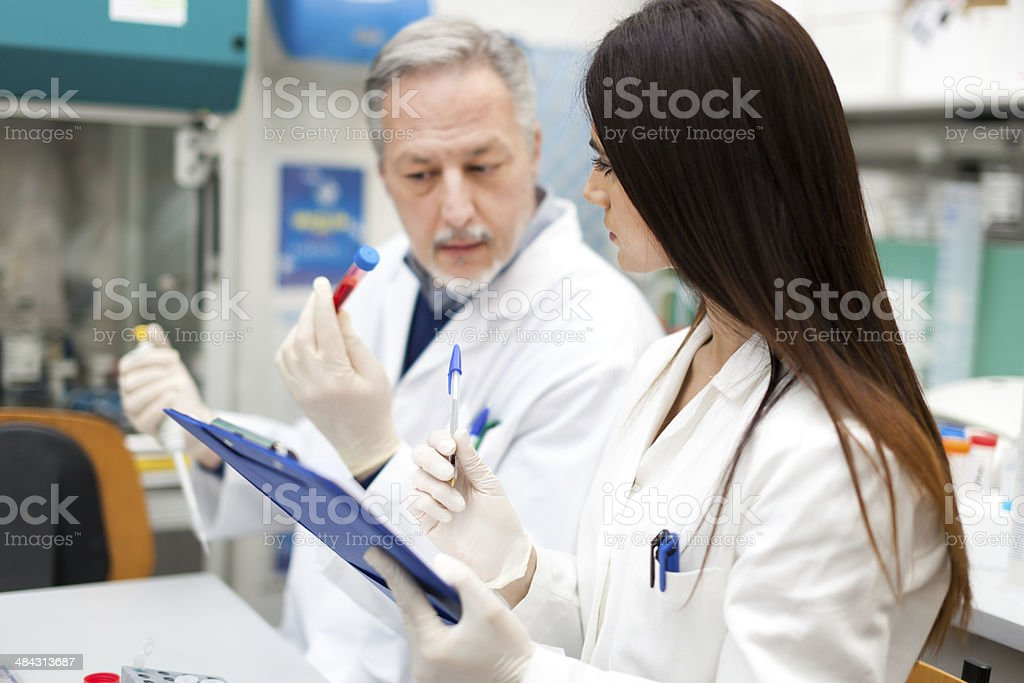 Scientists at work in a laboratory stock photo