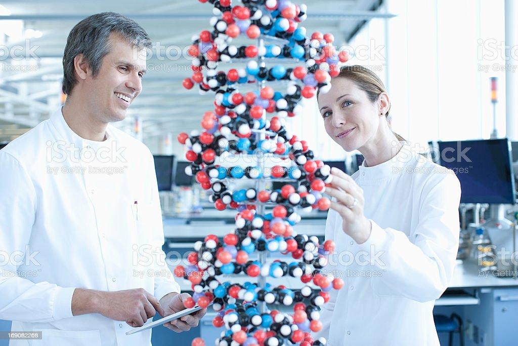 Scientists examining molecular model in lab royalty-free stock photo