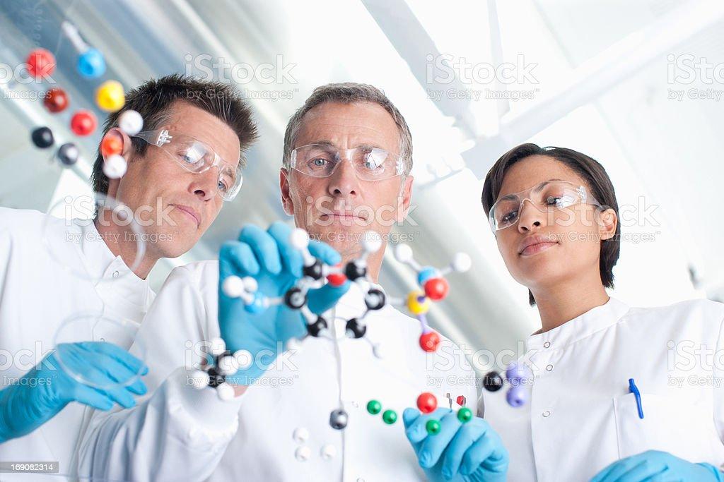 Scientists examining molecular models in lab stock photo