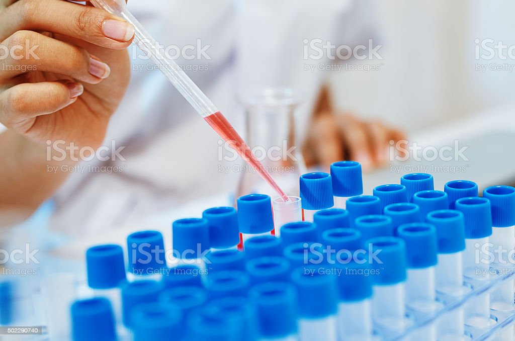 scientists experimenting in laboratory stock photo