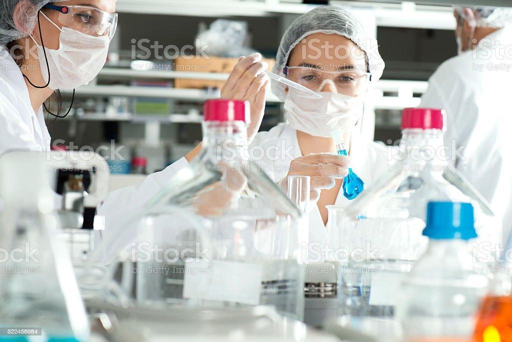 Scientists stock photo