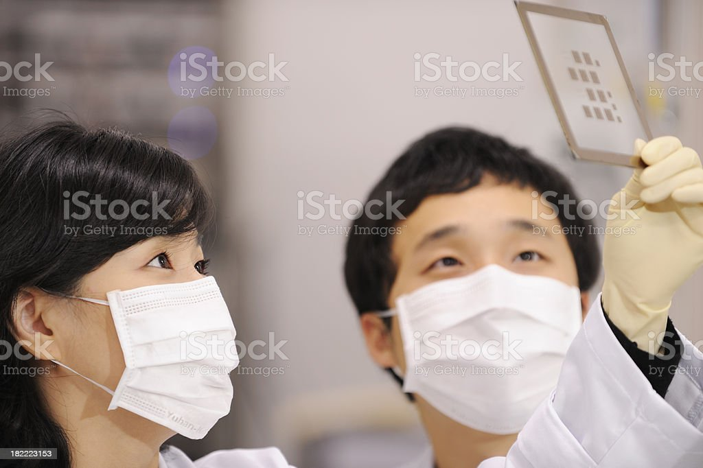 Scientists with flu mask for H1N1 prevention at work royalty-free stock photo