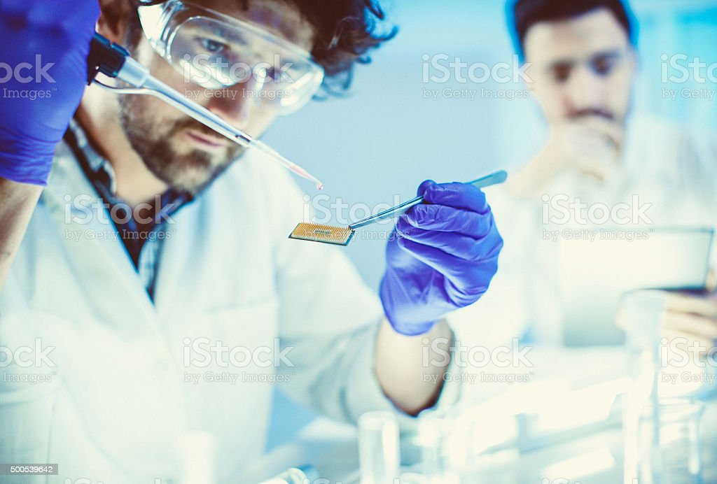 Scientists working at the lab stock photo