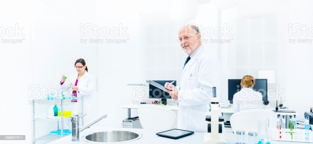 Scientists working in analysis laboratory royalty-free stock photo
