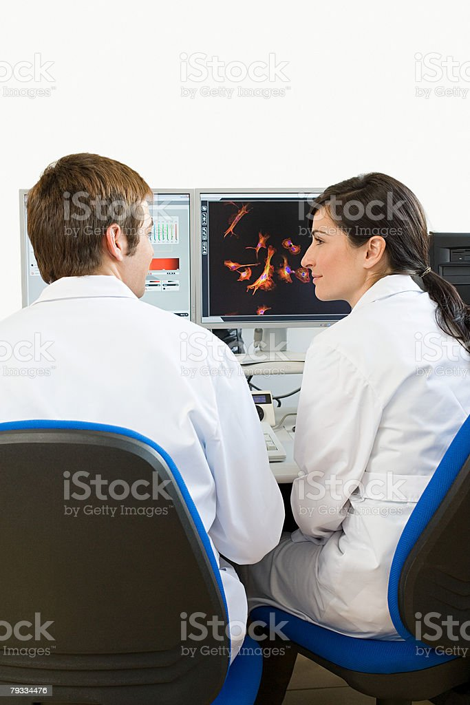 Scientists working on a computer royalty-free stock photo