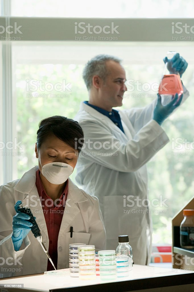 Scientists working together on experiments in laboratory stock photo