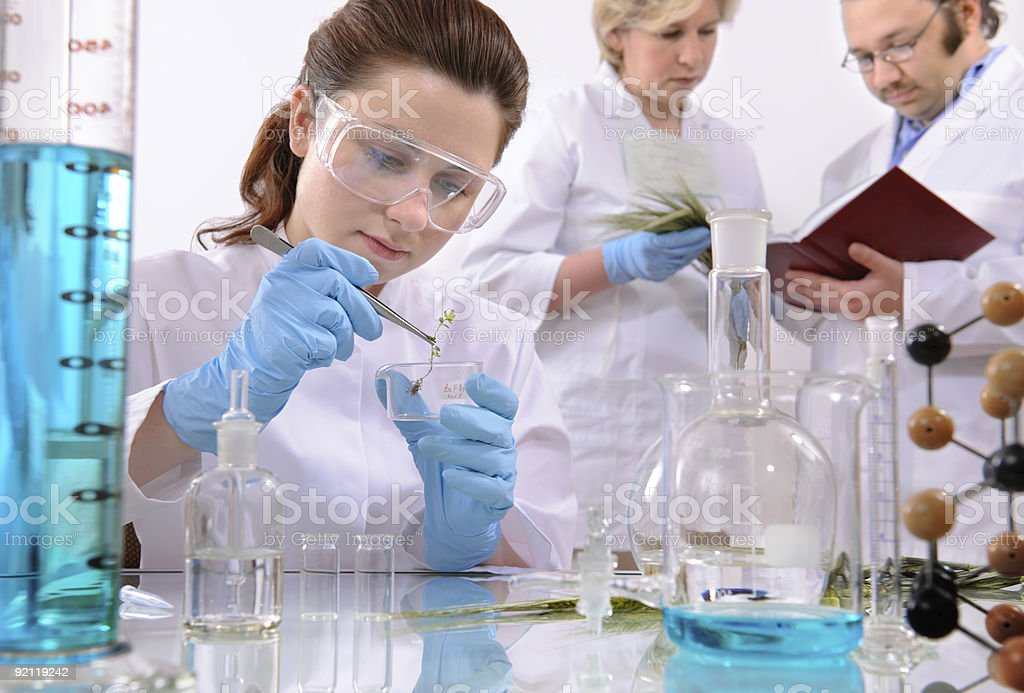 Scientists working with sprouts and substances in laboratory royalty-free stock photo