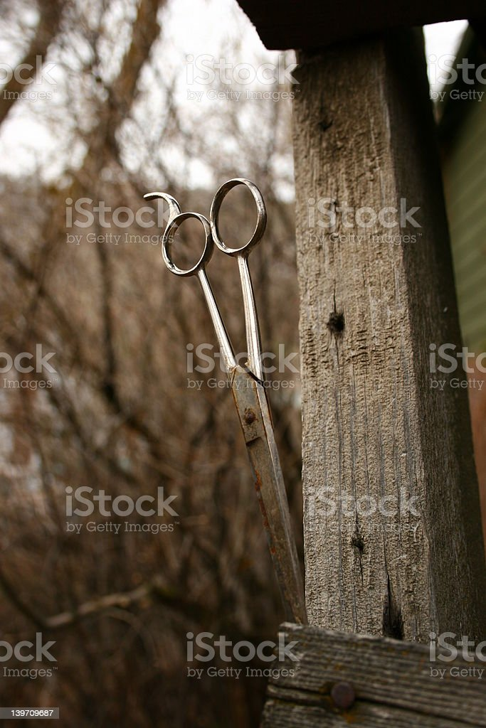 scissors in wood royalty-free stock photo