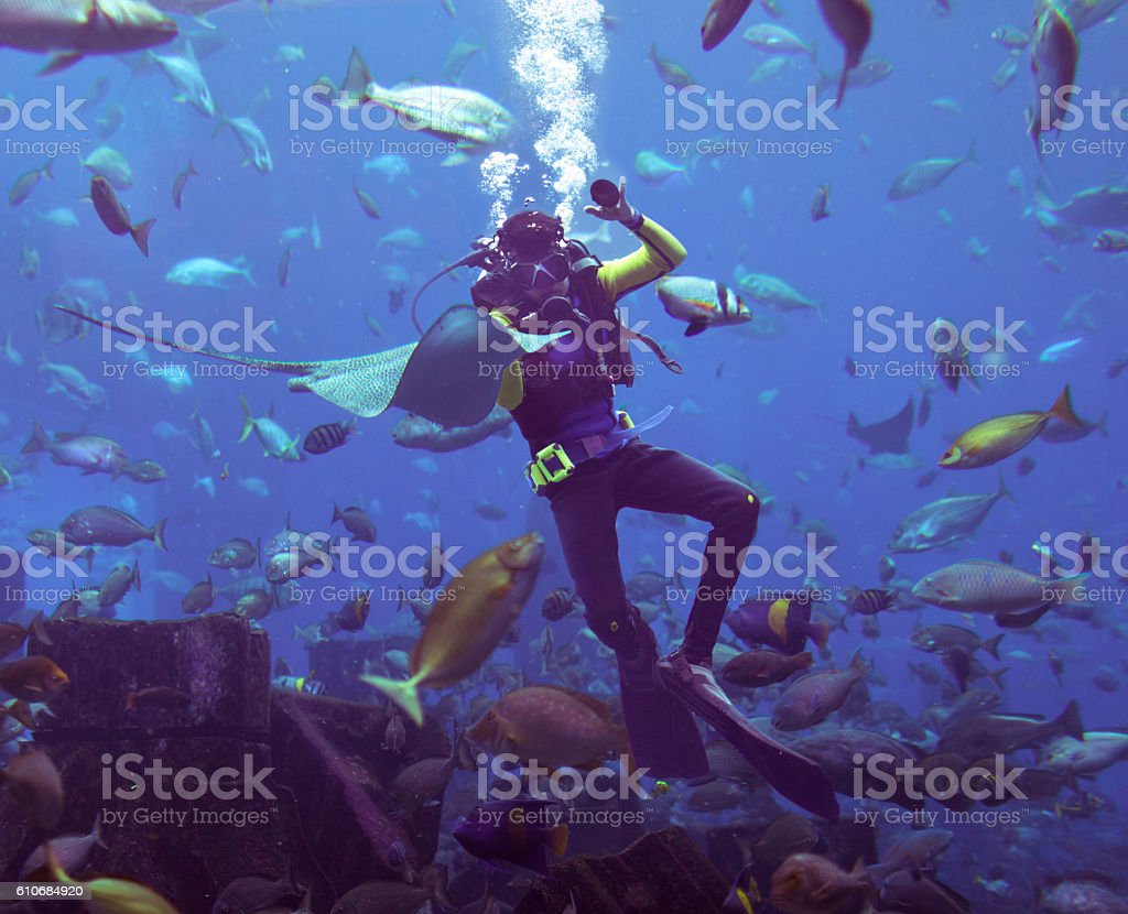 Scooba Diving stock photo