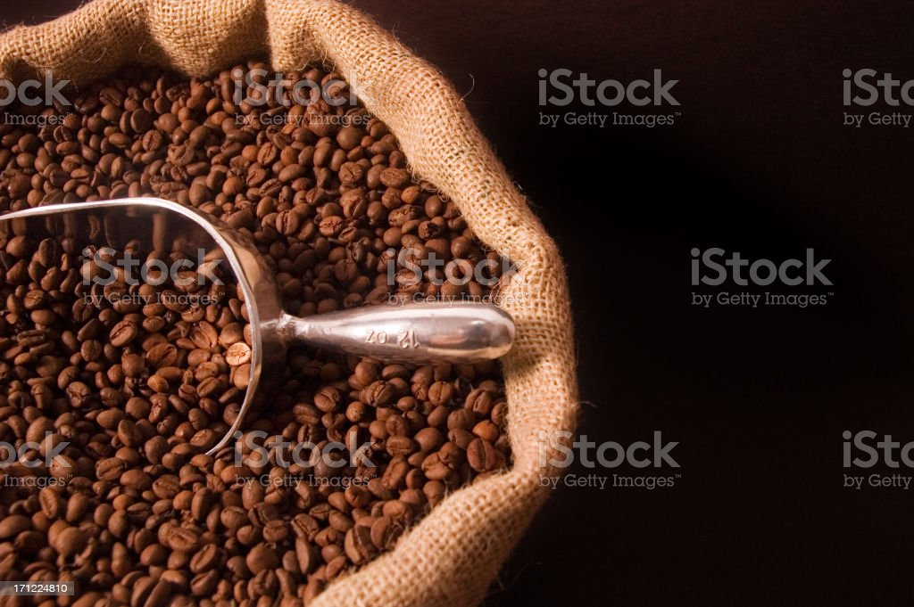 Scoop of coffee beans  with copy space royalty-free stock photo