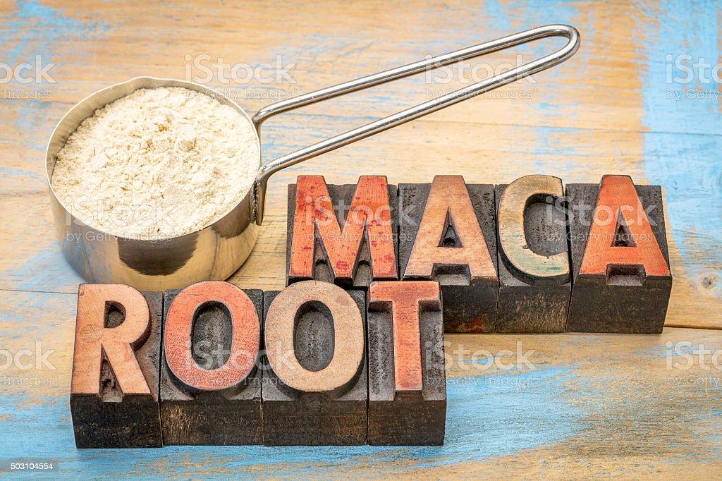 scoop of maca root powder stock photo