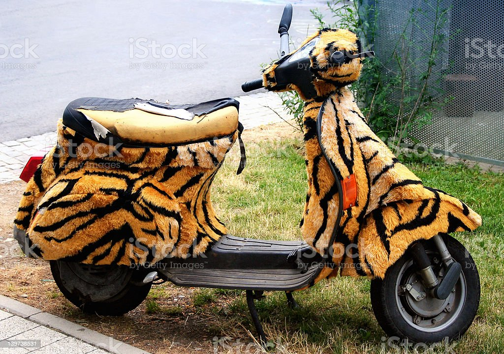 Scooter w/ Tiger Fur royalty-free stock photo