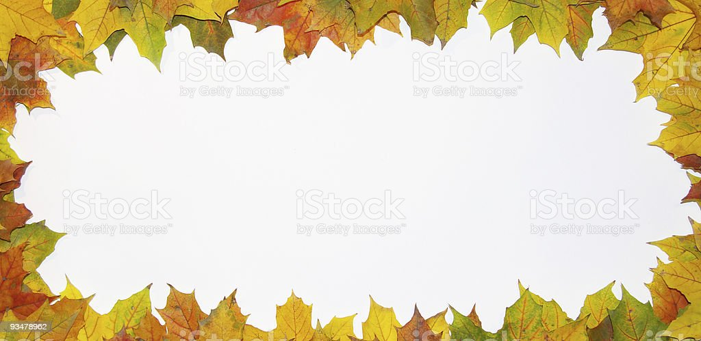 scope from leaves royalty-free stock photo