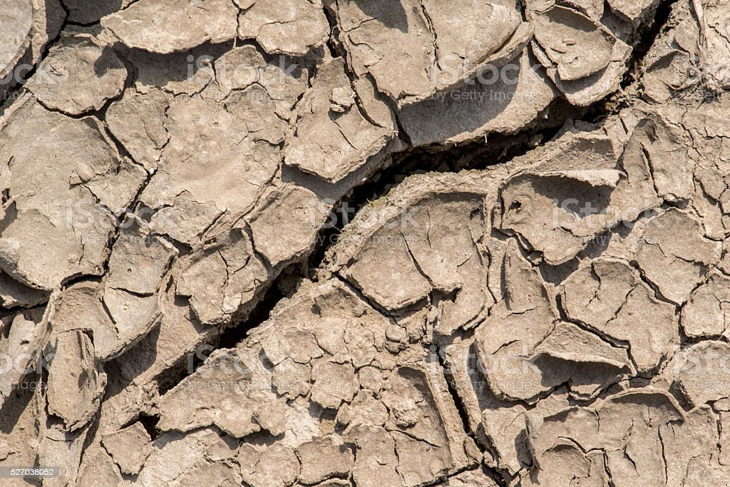 Scorched cracked earth stock photo