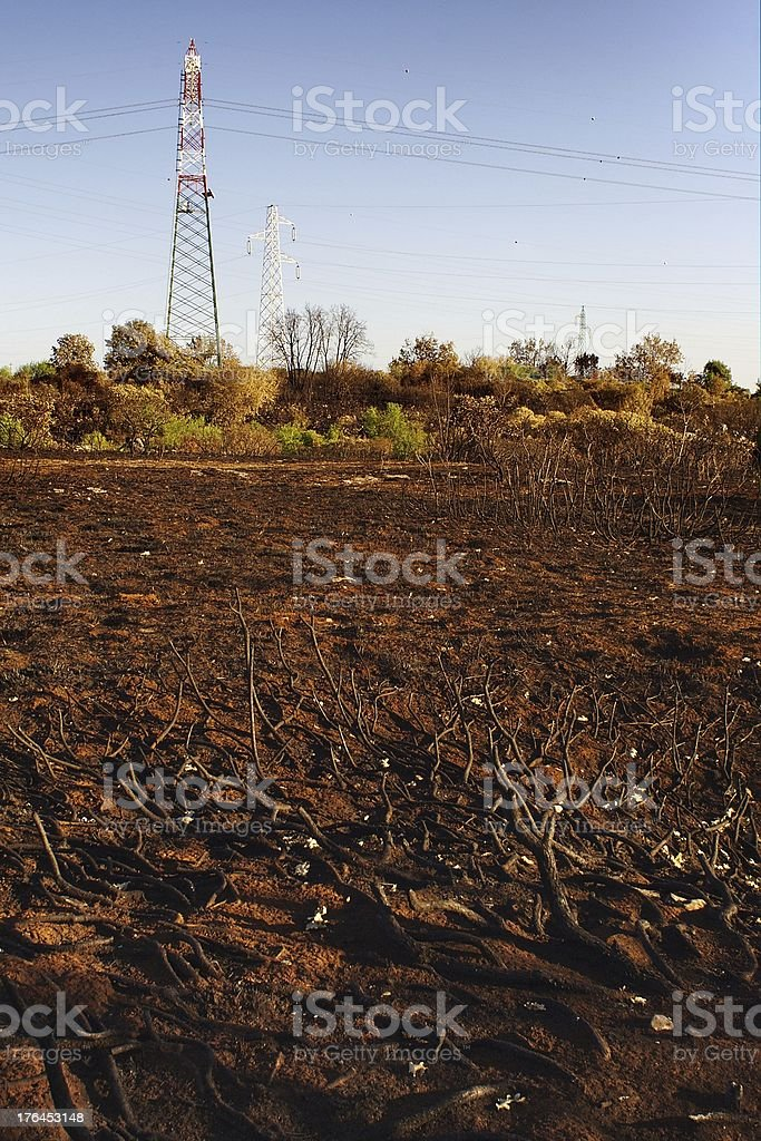 Scorched earth royalty-free stock photo