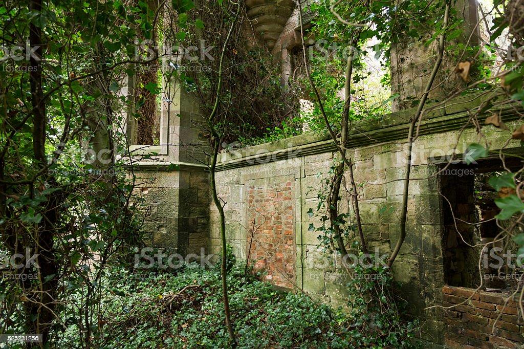 Scotland - Abandoned and overgrown stone house stock photo