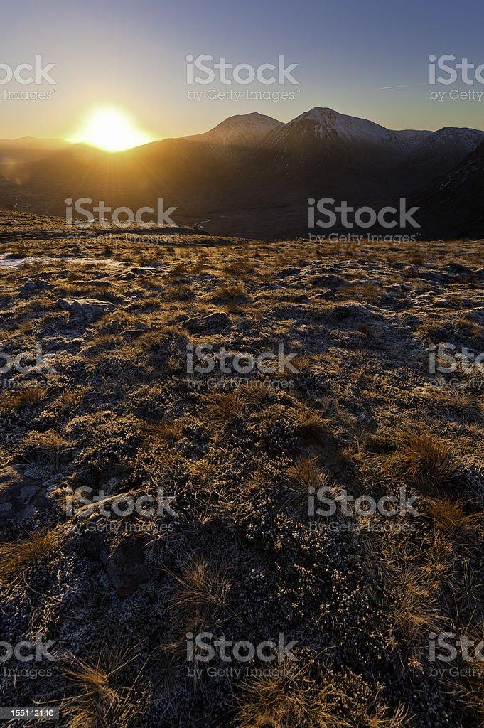 Scotland golden heather sunrise Glen Coe Rannoch Moor royalty-free stock photo