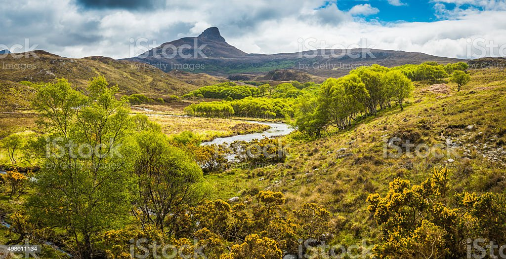 Scotland gorse and heather in wild mountain river glen Highlands stock photo