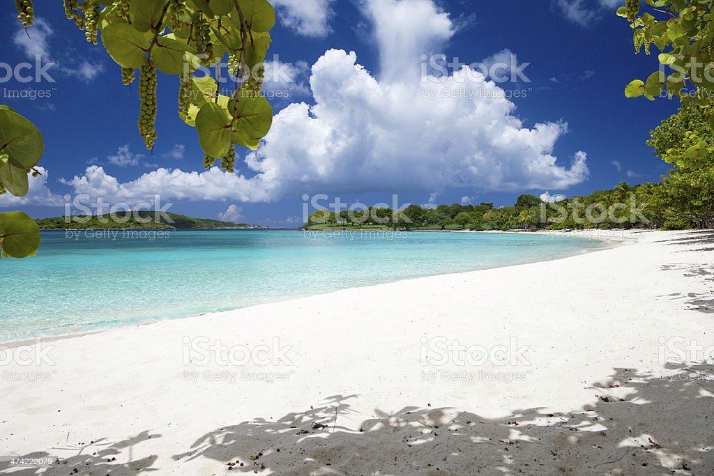 Scott Beach at Caneel Bay, St. John, US Virgin Islands stock photo