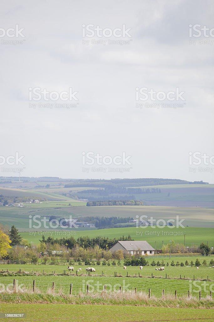Scottish Countryside royalty-free stock photo
