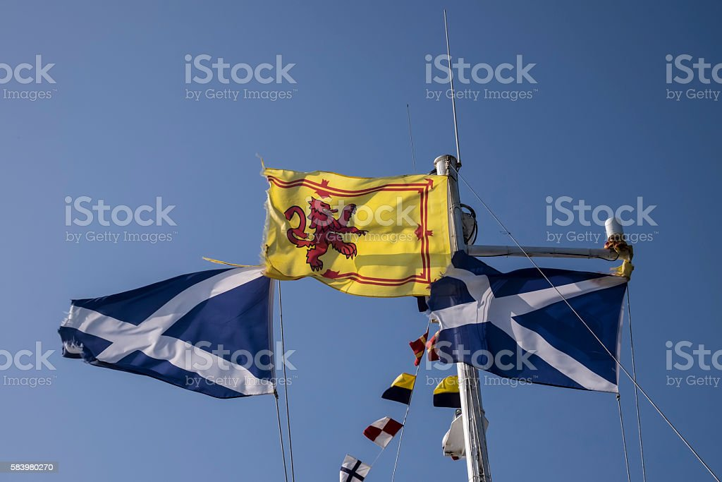 Scottish flags waving in the wind against clear blue sky stock photo
