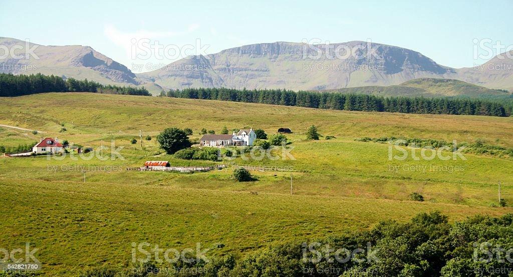 Scottish green farmland in summer. Isle of Skye. Hebrides UK stock photo