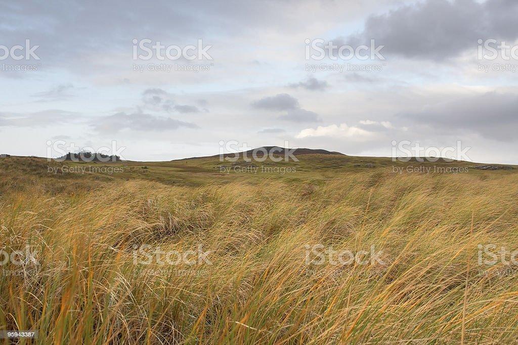 scottish hilly grassland royalty-free stock photo