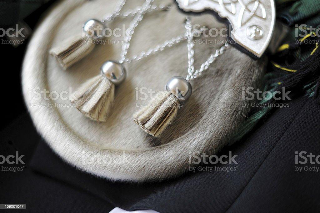 Scottish kilt Sporran detail accessory stock photo