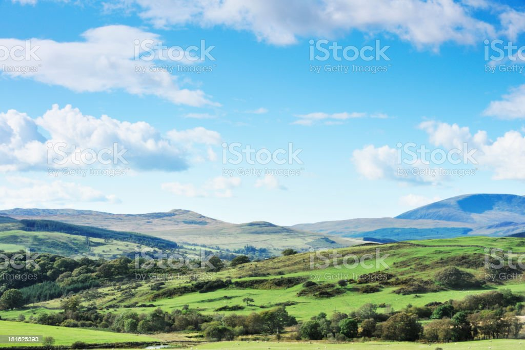 Scottish rural scene of woodland, fields and hills. stock photo