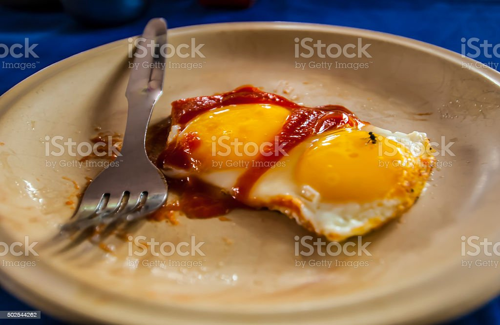 Scrambled eggs with a fly stock photo